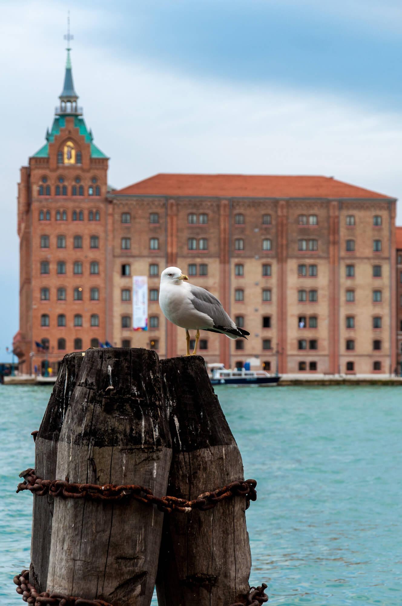 Hilton hotel Venice